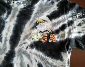 Realistic Bald Eagle with USA