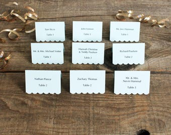 pale blue printed place cards for wedding, shower, party set of 100 cards - delaney