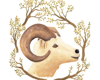 Goat Illustration - Archival Print