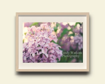 Purple lilacs, lilac print, lilac flower print, floral print, nursery floral decor, nursery art, purple lilac flowers, purple lilacs print