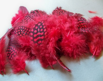 "Red Guinea Feathers-1""-3""-25 PCS"