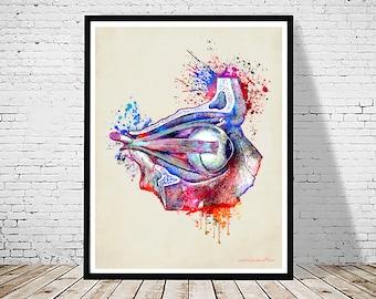 """Watercolor Eye Anatomy - 11""""x14"""" Fine Art Print, Doctor of Optometry gift, Ophthalmologist gift, Osteopathic medicine, Optician art, Eye Art"""