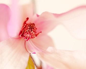 Spring! perfume