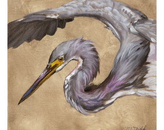 Strike a Pose - 6 x6 inch original oil painting of a tricolored heron by Martha Dodd