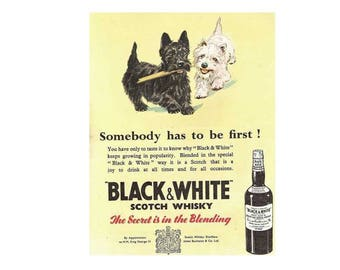 Black and white scotch whisky vintage style metal advertising wall plaque sign or framed picture frame