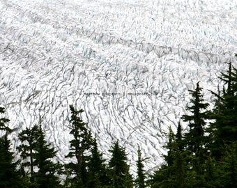 Juneau, Alaska • Mendenhall Glacier • Landscape photograph printed on canvas, fine art matte paper, or engineer paper