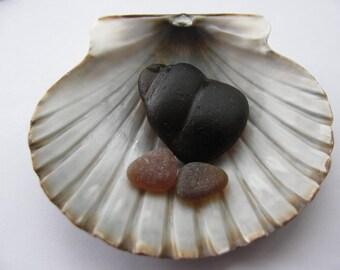 Bottleneck Beach Glass Brown Set , Vintage Genuine Bulk,Art Mosaic Jewelry Supply