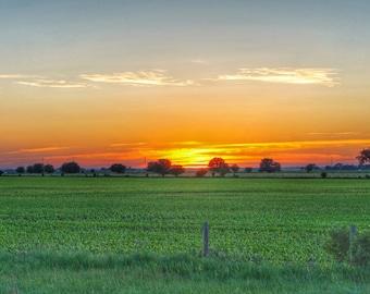 Field Sunset Photo Print