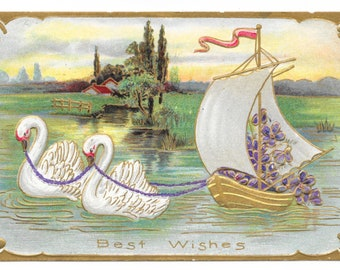 Swans Towing Violets Boat Postcard, 1909