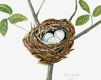 Cardinal's Nest (original painting), watercolor painting, birds nest painting, bird art, bird nest art.