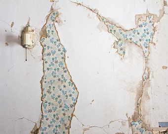 Decay Photograph, Urbex, Abandoned Photography, Abandoned Farmhouse, Rural, Rustic, Floral Wallpaper, Architecture, Farm Decor, Weathered