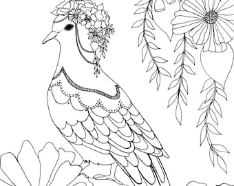 Fancy pigeon Colouring Page