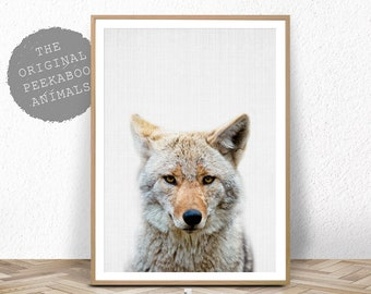 Coyote Wall Art Print, Boys Nursery Decor, Animal Photo Poster, Printable Instant Digital Download, Kids Bedroom Art Print, Coyote Decor