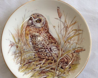 & Owl plates | Etsy