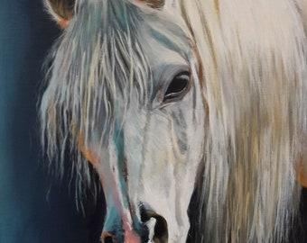 White Horse Portrait Original Country Living Landscape Fine Art by Venetka Arsenov