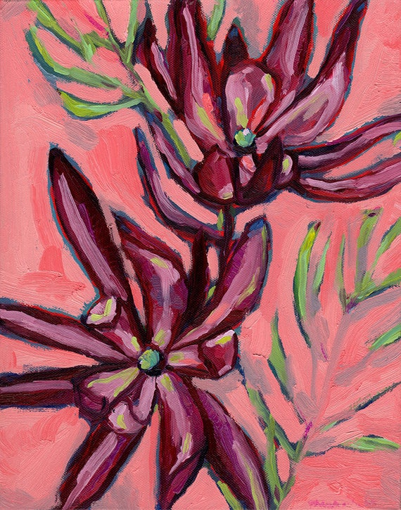 Fynbos Painting Archival Wall Art Print Illustration Australian Native art prints