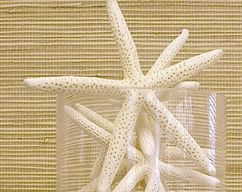 "Beach Decor - 2 Large Natural Starfish - 6""-7"" - coastal nautical wedding decor star fish"