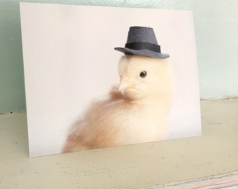Chicken Wearing A Miniature Pilgrim Hat Chicks in Hats Baby Animal Cards Cute Stationary #92