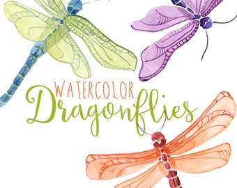 Watercolor dragonflies, Dragonfly Clip Art, Spring Insect Clipart, Dragonflies Clipart, Dragon Fly Illustration, Summer Clipart Illustration