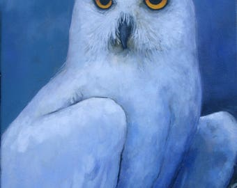 Owl Snowy Owl Male  'Print of Original' oil Painting colorful Blue Night Wise