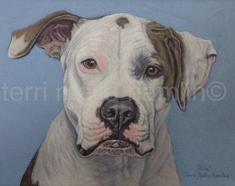 Custom Dog Portrait, 9x12, Pet Portrait, Custom Pet Portrait, Painted Pet Portraits, Dog Portrait Custom, Acrylic Painted Portrait