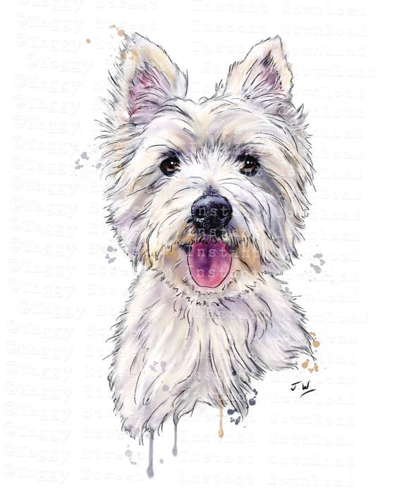 Dog clipart Westie clipart instant download. Digital animal