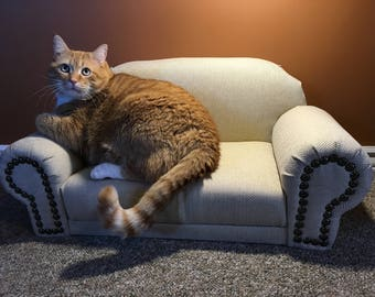 Pet Couch