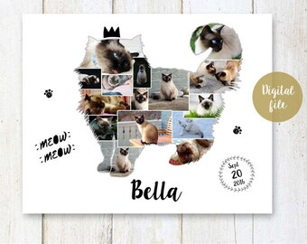 Cat Photo Collage - Any cat breed - Maine Coon Persian Ragdoll Birman Himalayan Angora Photo Collage wall art poster sign - DIGITAL FILE!