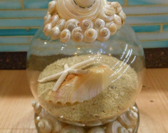 Beach Decor Seashell and Sand Globe - Coastal Snow Globe - Christmas - Snow Globe