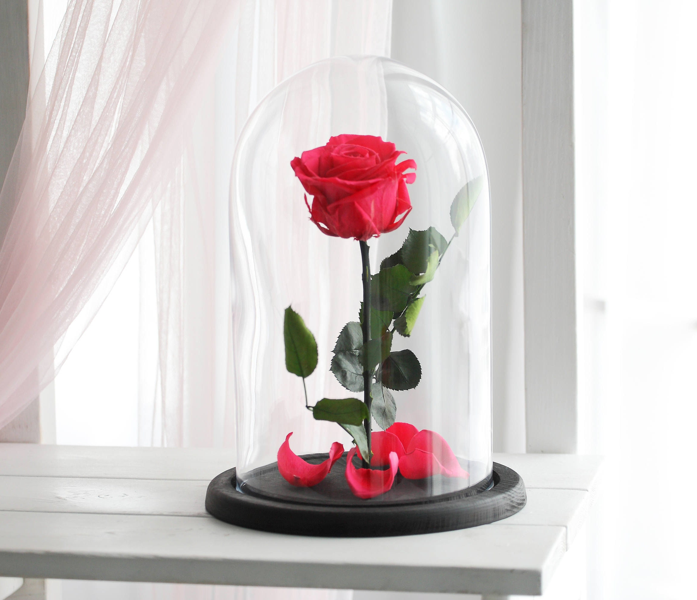 Beauty and the beast rose large forever rose forever pink zoom izmirmasajfo