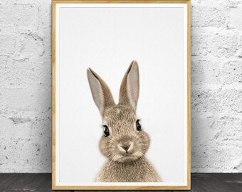Rabbit Print, Nursery Animals, Nursery Print, Nursery Printable, Animal Print, Nursery Animal Print, Nursery Wall Art, Nursery Decor