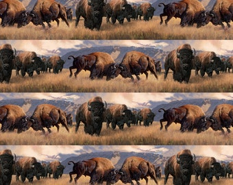 Northcott Naturescapes When Push Comes to Shove Bison Buffalo Stripe DP21956-34, Half Yard Free Shipping Cotton Fabric