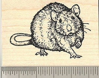 Realistic Rat Rubber Stamp J50404 Wood Mounted, Detailed