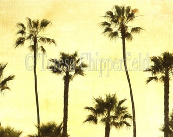 Tree Photography, California Palm Trees Photo, Dreaming, Sunset, Ocean, Green Tones, Yellow Sky, Beach Cottage Chic, Rustic Art, 12x18,16x24