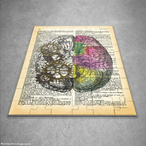 Left Right Brain Puzzle Anatomy Jigsaw Puzzle Brain Wall