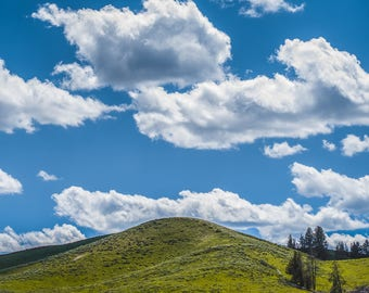 Clouds in Montana 24x16, Photography, Landscape photo, Vivid Clouds, Green Grass photo, Wall Art