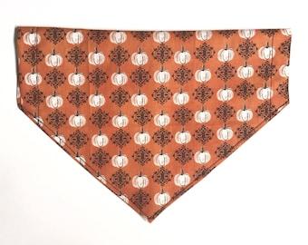 Pumpkin on orange bandana