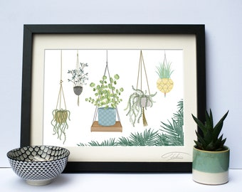 Hanging Plants Illustration Giclée Print, Home, Contemporary, Wall Art