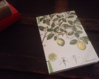 Lime & Guava covered blank journal