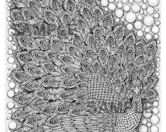 """Digital download-Printable PDF-Coloring Page-Adult Coloring-Printable Wall Art-Art print-Hand-Drawn """"Peacock The Fan."""""""