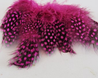 Pink Feathers Guinea Fowl GFD-14-L
