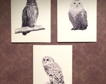 Set of 6 Handmade Blank Owl Bird Print Note Cards Snowy, Barred, Great Horned