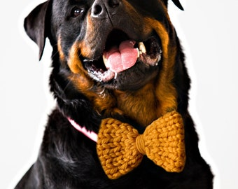 YELLOW Knit Dog Bow Tie! Vegan knit, hand knit, chunky knit, dog bow tie, dog bowtie, vegan gift