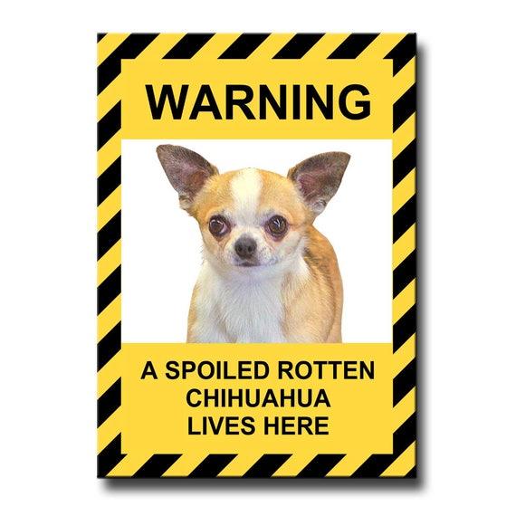 Chihuahua Spoiled Rotten Fridge Magnet