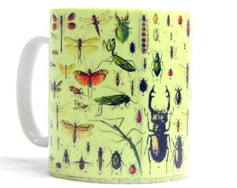 Insects Mug, Insects Gift, Bug Mug, Birthday Gift, Ideal Gift for Insect Lover.