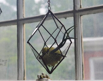 Iridis Terrarium, small -- for air plant terrarium or small succulent -- stained glass -- terrarium supplies -- eco friendly