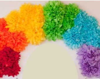 Pom rainbow kit tissue paper flower pom pom rainbow petite pom rainbow kit tissue paper flower pom pom rainbow decorations mightylinksfo
