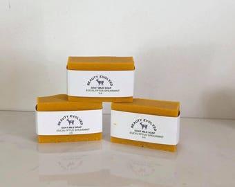 Goat Milk Soap / LIMITED EDITION SOAP   Eucalyptus Spearmint
