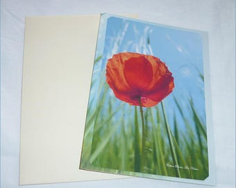 "Carte double "" Un coquelicot "" 10,5x15cm de Céline Photos Art Nature"
