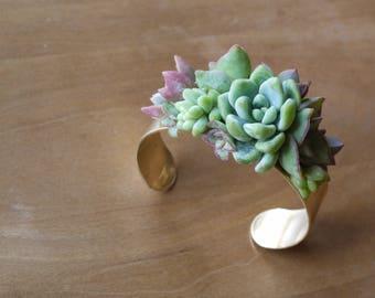 Brass Cuff Bracelet with silver succulents & sedums